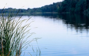 Glasbergasjön